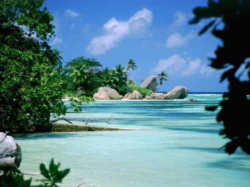 Новый год с рестораном Паруса на сейшельских островах